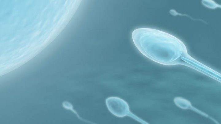 cómo mejorar la calidad del esperma